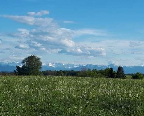 Baugrundstück Berg am Starnberger See – Bergblick, Astrid Kaiser Maklerin