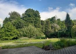 Berg, Starnberger See, Doppelhaus, Grundstück, Haus mit ELW, Kaiser Immobilien